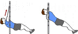 A person is starting an Inverted Row. A person is completing an Inverted Row.