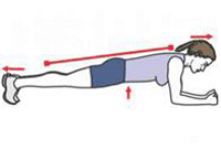 A person is performing a Front Plank.