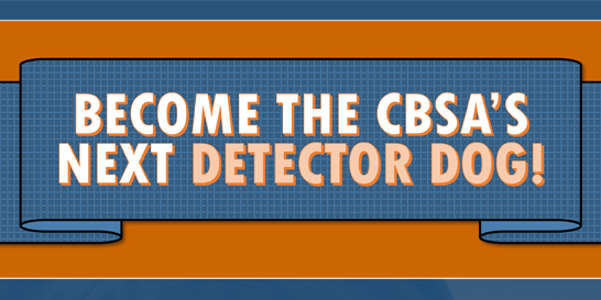 Become the CBSA's next detector dog